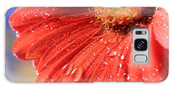 Gerbera Daisy After The Rain Galaxy Case