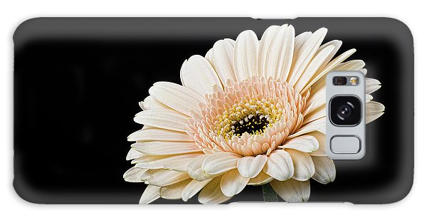 Galaxy Case featuring the photograph Gerbera Daisy On Black II by Clare Bambers
