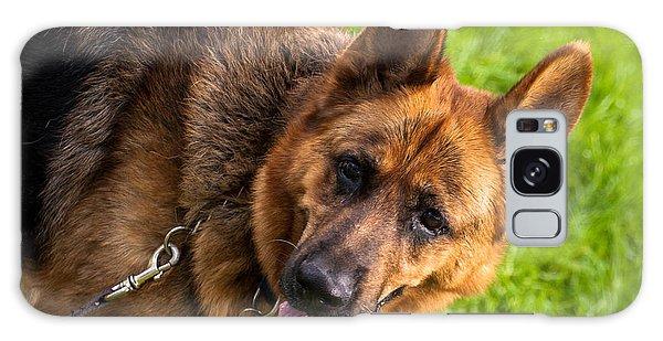 German Shepherd Heidi Profile Galaxy Case
