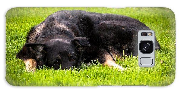 German Shepherd Sleeping Galaxy Case