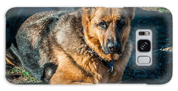 German Shepherd Sonoma Coast Galaxy Case