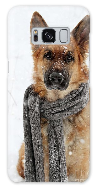 German Shepherd Wearing Scarf In Snow Galaxy Case