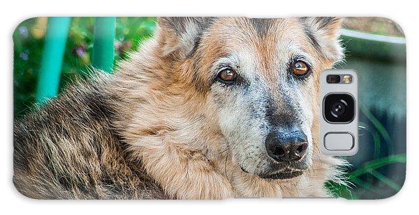 German Shepherd Woody Profile Galaxy Case