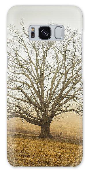 Tree In Fog - Blue Ridge Parkway Galaxy Case