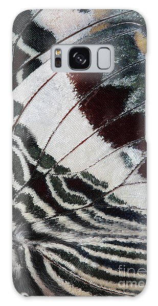 Giant Charaxes Butterfly Galaxy Case