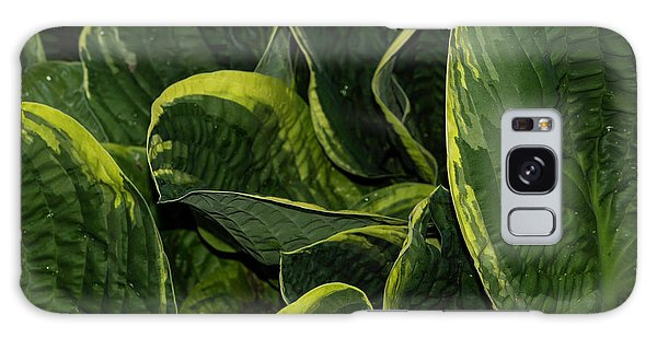 Giant Hosta Closeup Galaxy Case