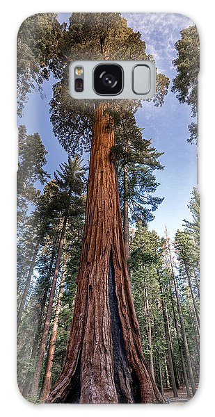 Giant Sequoia Galaxy Case