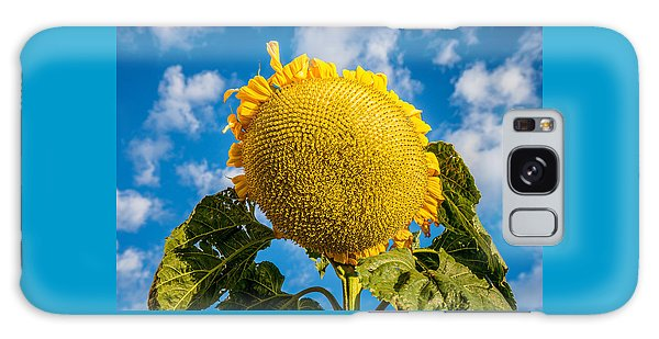 Giant Sunflower Against A Blue Sky With Clouds. Galaxy Case