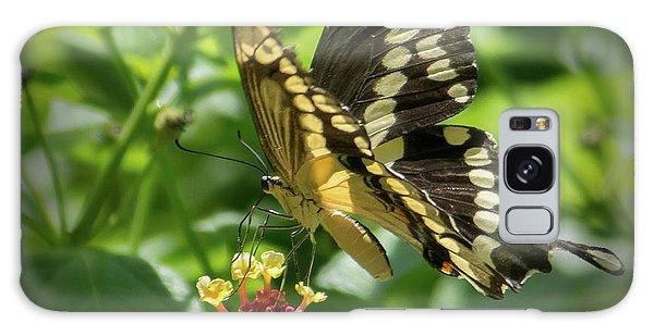 Giant Swallowtail On Lantana Galaxy Case
