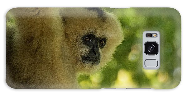 Gibbon Portrait Galaxy Case