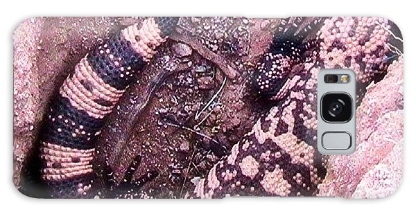 Gila Monster - Number One Galaxy Case