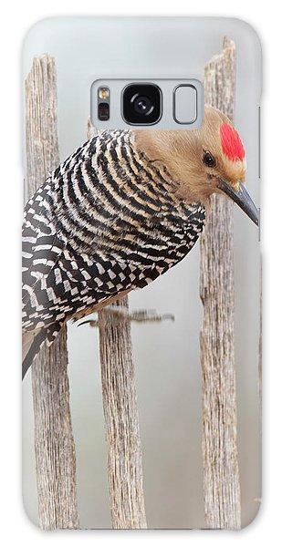 Gila Woodpecker Galaxy Case