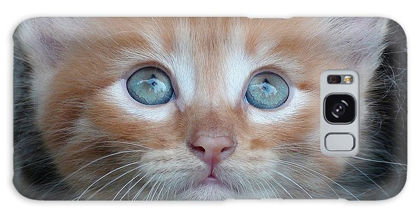 Ginger Kitten With Blue Eyes Galaxy Case by Sergey Lukashin