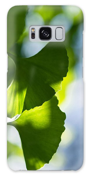 Gingko Leaves In The Sun Galaxy Case
