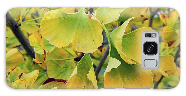 Ginkgo Gold Galaxy Case by Pamela Patch