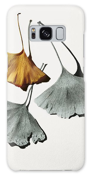 Ginkgo Leaves Galaxy Case