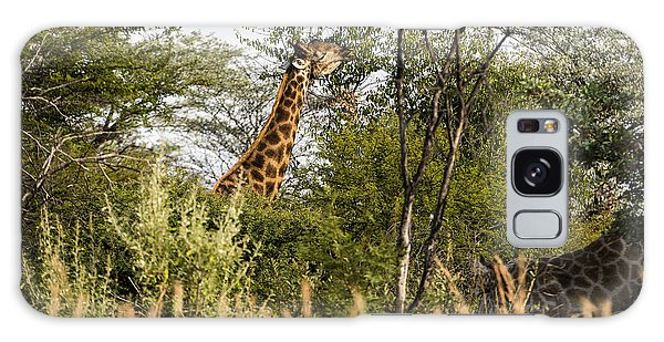 Giraffe Browsing Galaxy Case