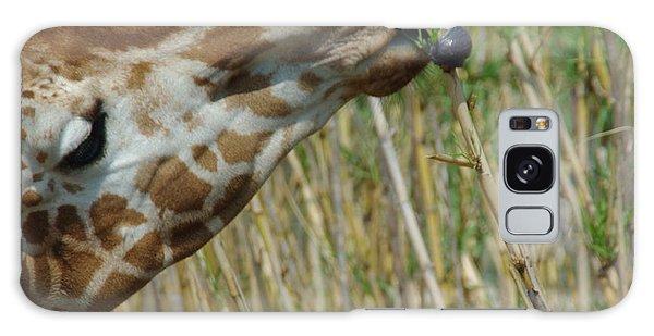 Giraffe Feeding 1 Galaxy Case by Robyn Stacey