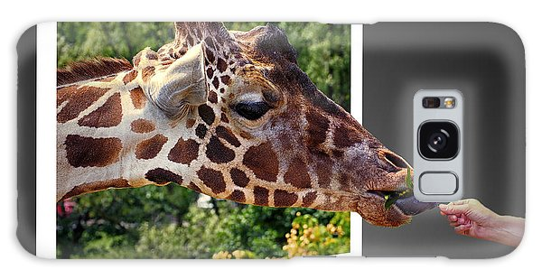 Giraffe Feeding Out Of Frame Galaxy Case