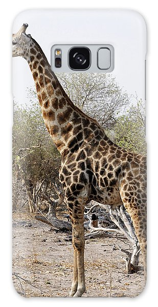 Giraffe Galaxy Case by Robert Shard