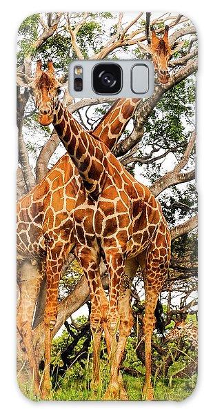 Giraffe's Looking Galaxy Case