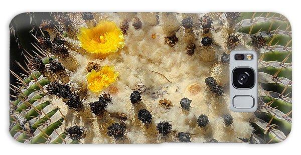 Giving Birth Barrel Cactus Yellow Flowers Galaxy Case