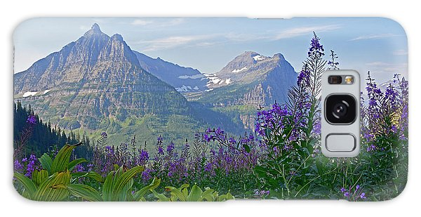 Glacier National Park Fireweed Galaxy Case