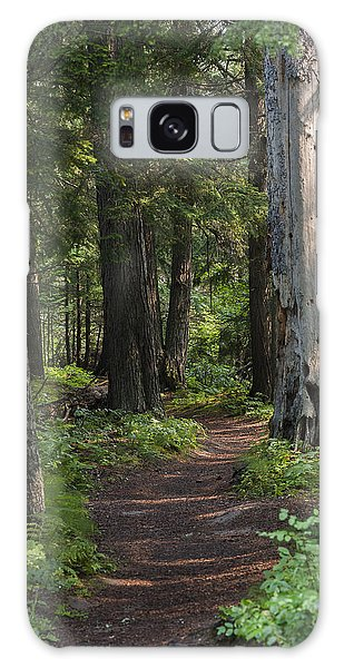 Glacier National Park Woodland Trail Galaxy Case