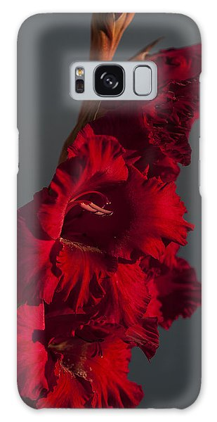 Gladiolus Against A Dark Cloud Galaxy Case