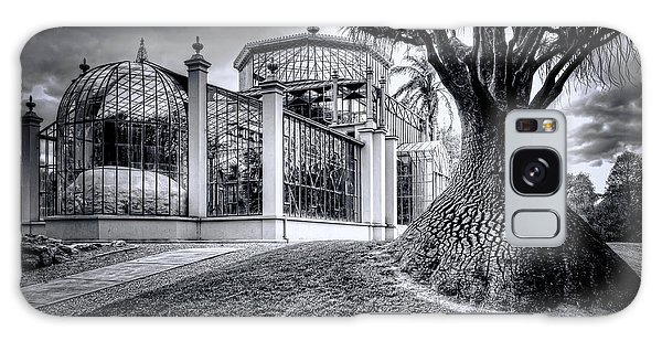 Glasshouse And Tree Galaxy Case by Wayne Sherriff