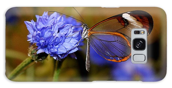 Glasswing Butterfly Galaxy Case