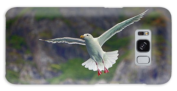 Glaucous-winged Gull Galaxy Case
