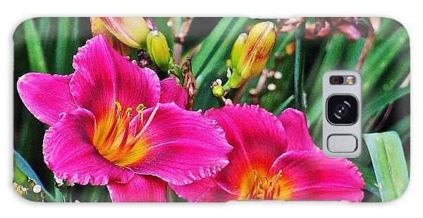 Glorious Daylilies Galaxy Case