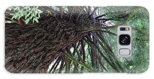 Glorious Tree  Galaxy Case