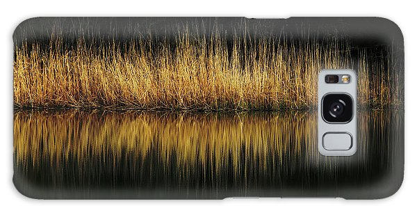 Glow And Reflections At Lakes Edge Galaxy Case