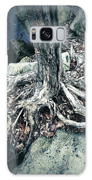 Gnarled Rooted Beauty Galaxy Case