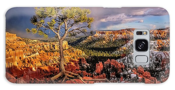 Gnarled Tree At Bryce Canyon Galaxy Case