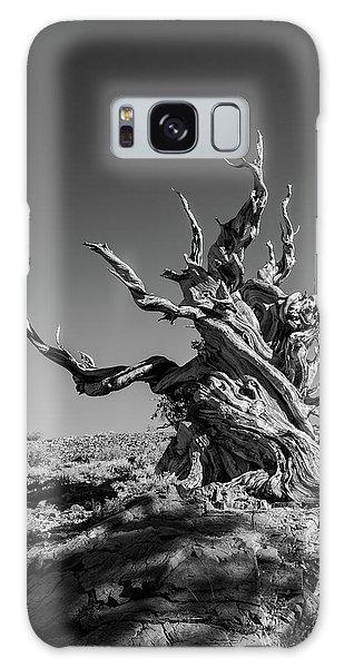 Gnome Tree Galaxy Case