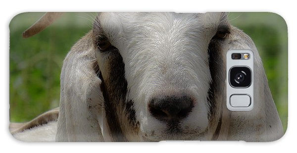 Goat 1 Galaxy Case