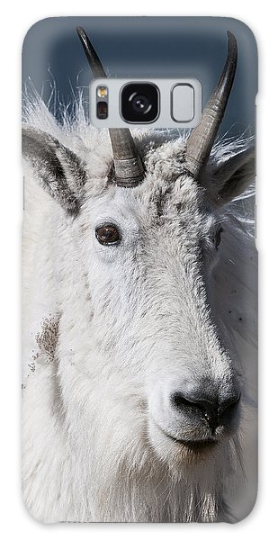 Goat Portrait Galaxy Case