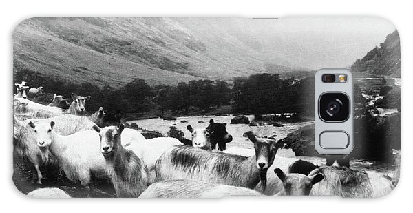 Goats In Norway- By Linda Woods Galaxy Case by Linda Woods