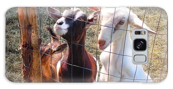 Goats Poster Galaxy Case by Felipe Adan Lerma