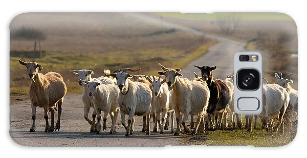 Goats Walking Home Galaxy Case