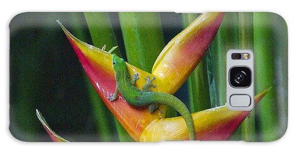 Gold Dust Day Gecko Galaxy Case by Sean Griffin