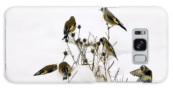 Gold Finches In Snow Galaxy Case