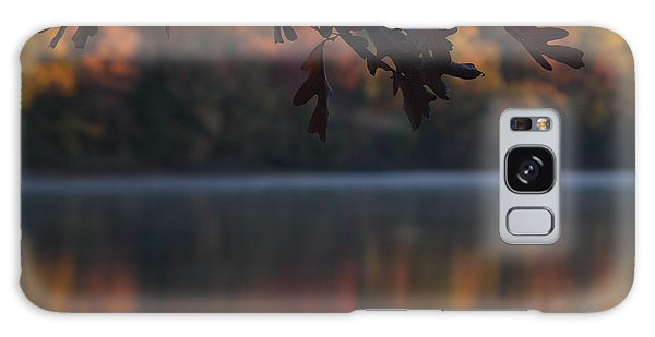 Galaxy Case featuring the photograph Golden Autumn by Vadim Levin