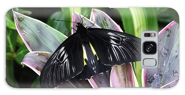 Golden Birdwing Galaxy Case by Judy Wanamaker