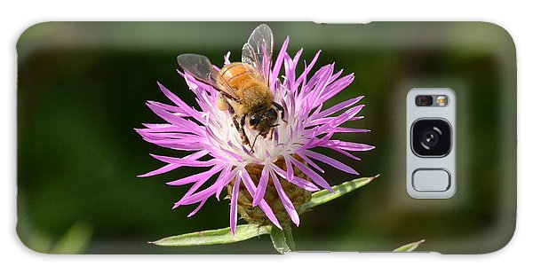 Golden Boy-bee At Work Galaxy Case by David Porteus