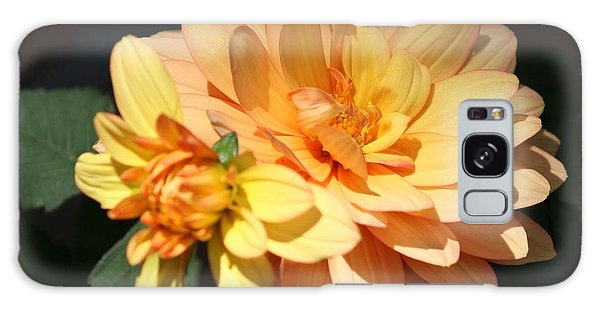 Golden Dahlia With Bud Galaxy Case