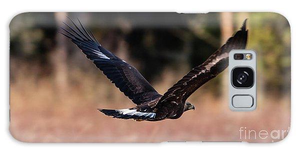 Golden Eagle Flying Galaxy Case by Torbjorn Swenelius